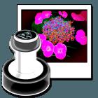 Versorgen-Sie-meherere-Bilder-mit-Wasserzeichen-icon