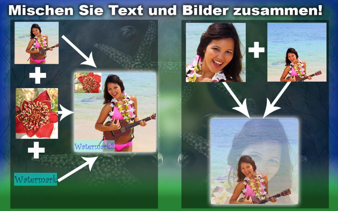Versorgen-Sie-meherere-Bilder-mit-Wasserzeichen2